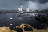 Ликвидация нефтяных загрязнений