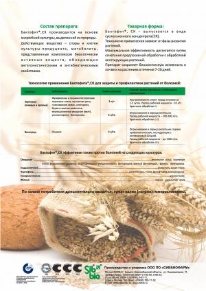 Бактофит - биологический фунгицид и бактерицид