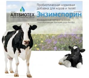 Энзимспорин для коров и телят
