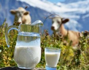 Кормовая смесь для выпойки телят Фермолюкс